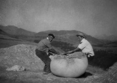 Transporte de la harina
